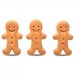Gingerbread man - Christmas edition