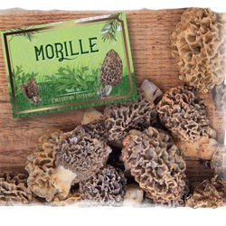 Mustard with Morels